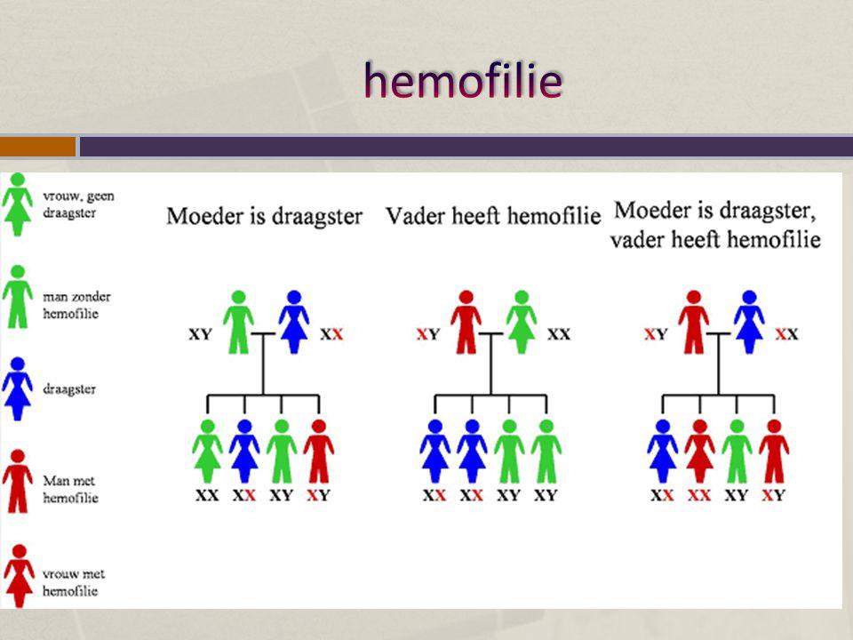 Gen kleurenblindheid ligt op X-chromosoom De Ishihara test voor kleurenblindheid.