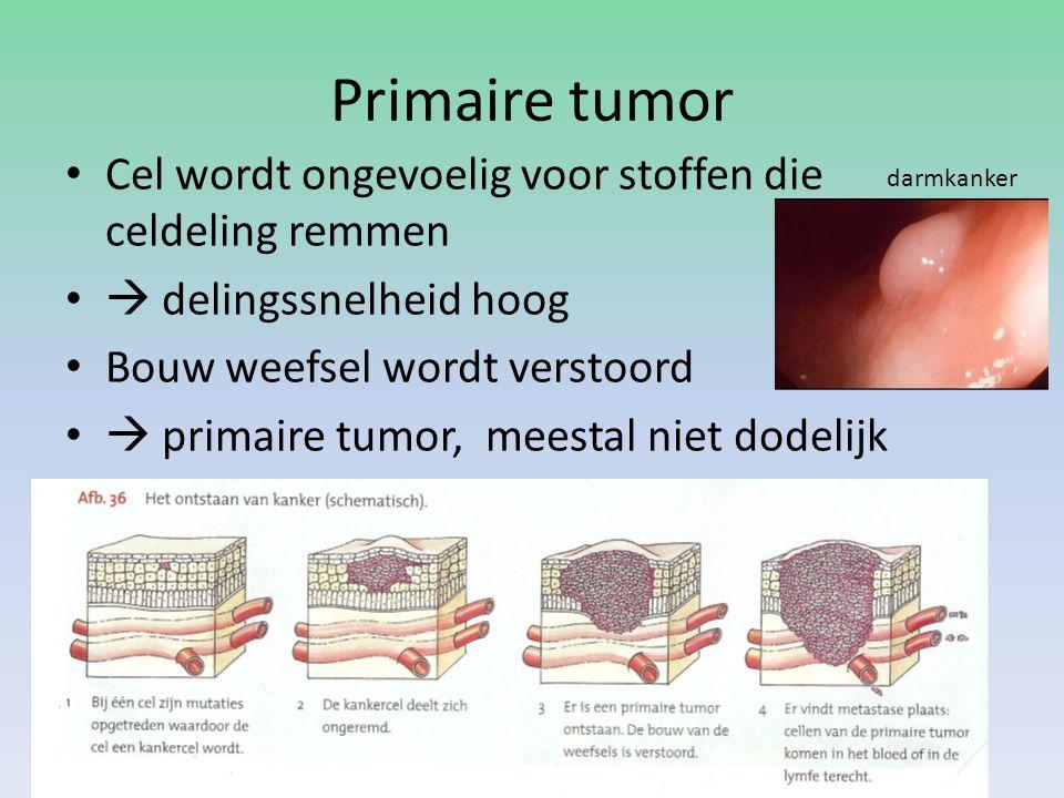 Primaire tumor Cel wordt ongevoelig voor stoffen die celdeling remmen  delingssnelheid hoog Bouw weefsel wordt verstoord  primaire tumor, meestal ni