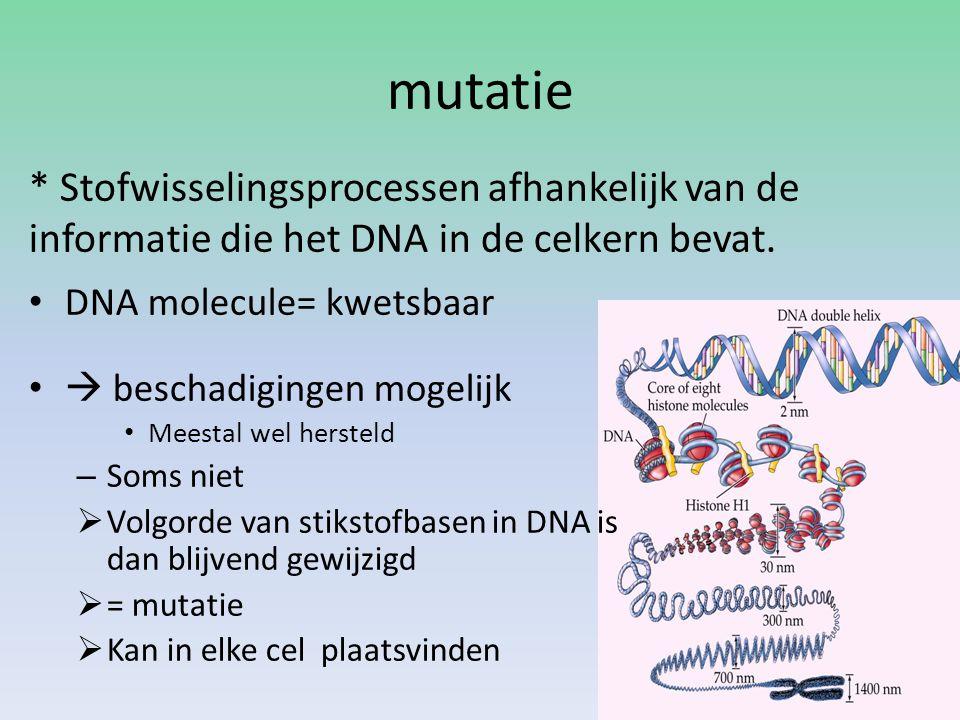 mutatie DNA molecule= kwetsbaar  beschadigingen mogelijk Meestal wel hersteld – Soms niet  Volgorde van stikstofbasen in DNA is dan blijvend gewijzi