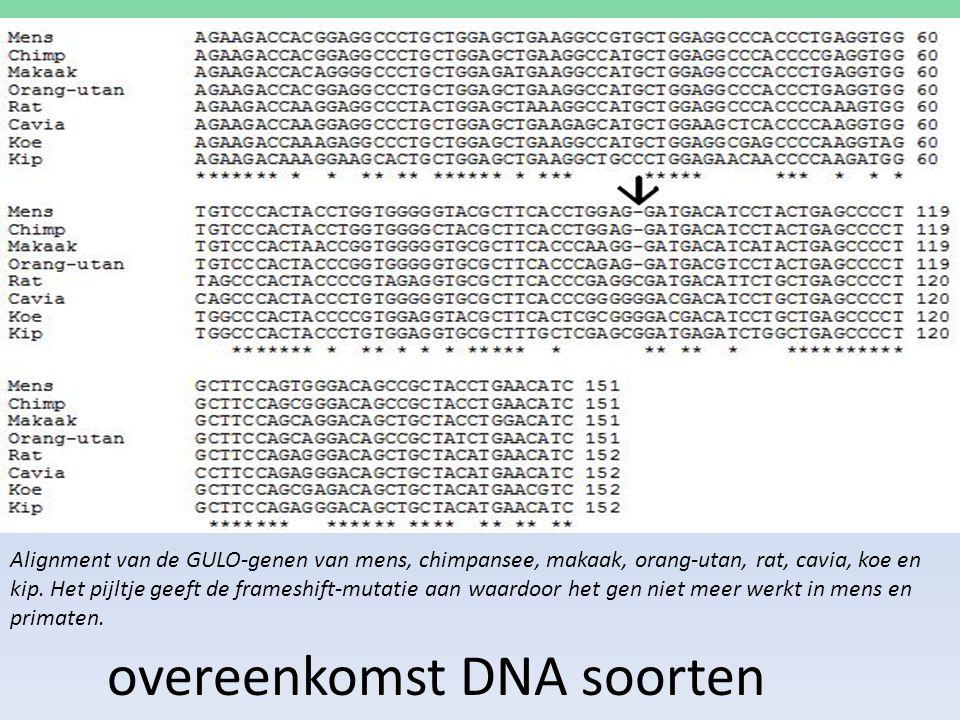 overeenkomst DNA soorten Alignment van de GULO-genen van mens, chimpansee, makaak, orang-utan, rat, cavia, koe en kip. Het pijltje geeft de frameshift
