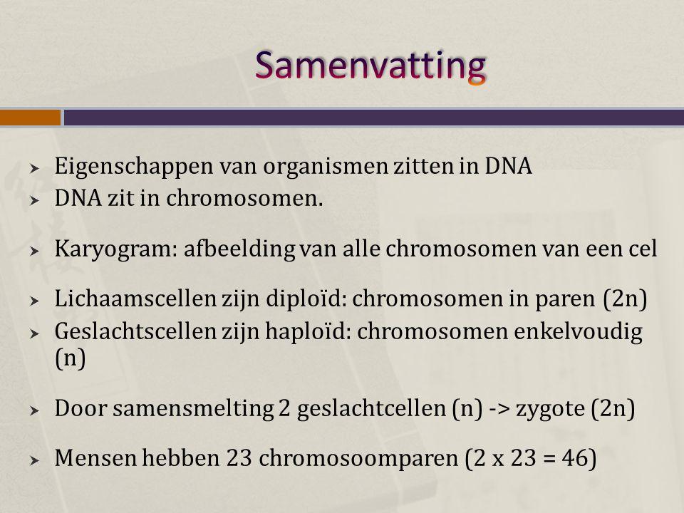  Eigenschappen van organismen zitten in DNA  DNA zit in chromosomen.  Karyogram: afbeelding van alle chromosomen van een cel  Lichaamscellen zijn