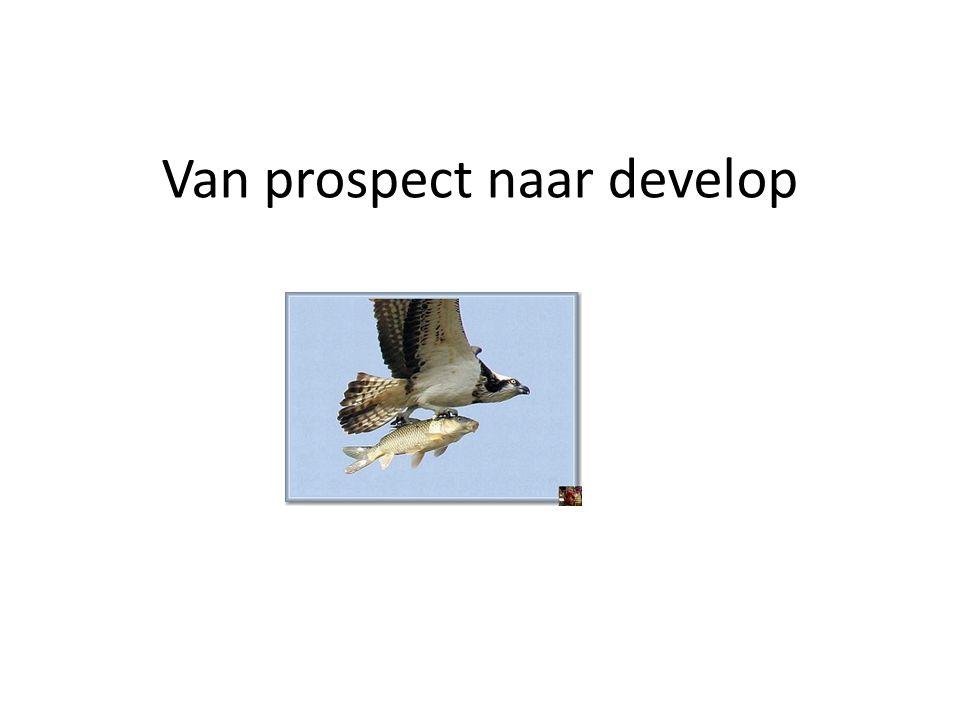 Van prospect naar develop