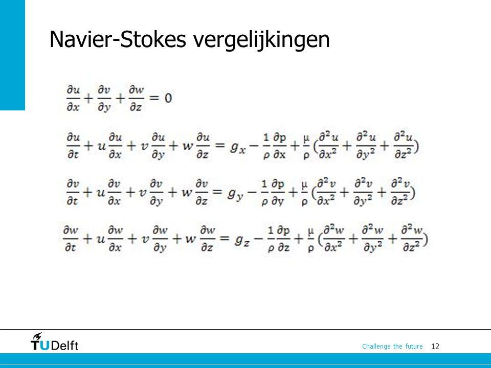 12 Challenge the future Navier-Stokes vergelijkingen