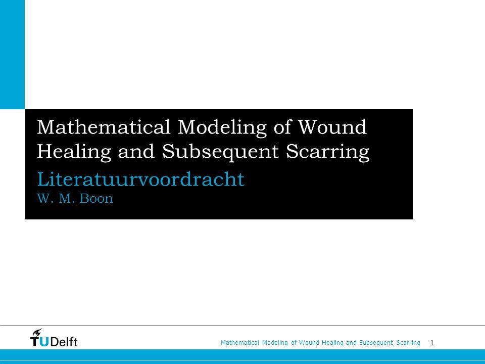 2 Mathematical Modeling of Wound Healing and Subsequent Scarring Het proces: wondgenezing Snijwond 3 fasen Inflammation Proliferation Remodeling 6 belangrijke spelers Macrofagen en fibroblasten Fibrine en collageen tPA en TGF-β