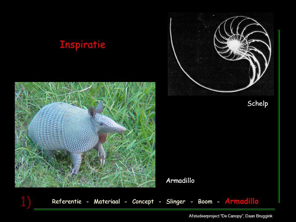 """Afstudeerproject """"De Canopy"""", Daan Bruggink 1) Inspiratie Referentie - Materiaal - Concept - Slinger - Boom - Armadillo Armadillo Schelp"""