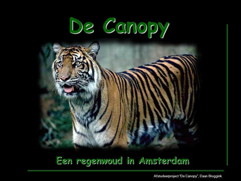 """De Canopy Afstudeerproject """"De Canopy"""", Daan Bruggink Een regenwoud in Amsterdam"""