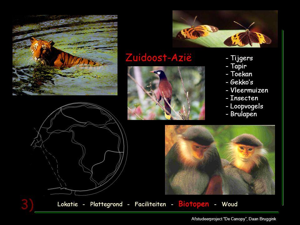 Afstudeerproject De Canopy , Daan Bruggink 3) - Tijgers - Tapir - Toekan - Gekko's - Vleermuizen - Insecten - Loopvogels - Brulapen Zuidoost-Azië Lokatie - Plattegrond - Faciliteiten - Biotopen - Woud