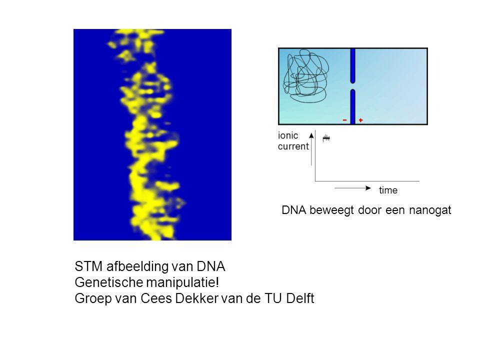 STM afbeelding van DNA Genetische manipulatie! Groep van Cees Dekker van de TU Delft DNA beweegt door een nanogat