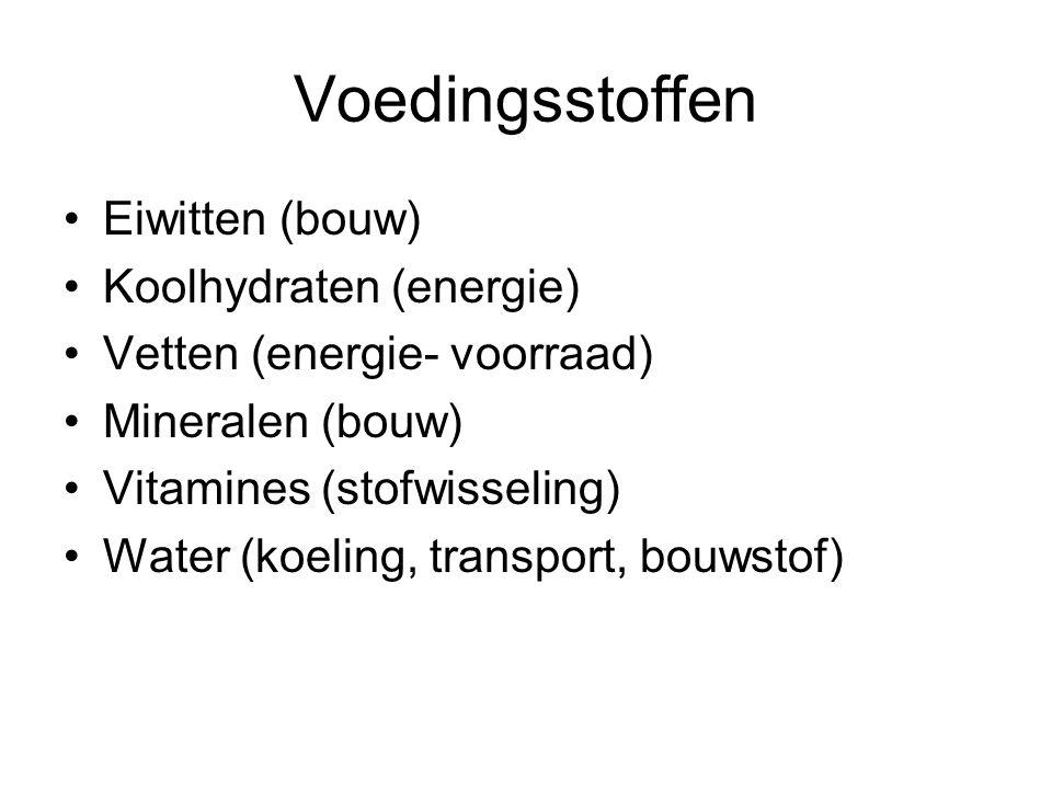Voedingsstoffen Eiwitten (bouw) Koolhydraten (energie) Vetten (energie- voorraad) Mineralen (bouw) Vitamines (stofwisseling) Water (koeling, transport, bouwstof)