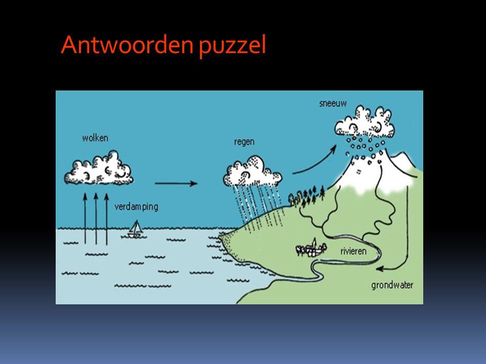 Antwoorden puzzel