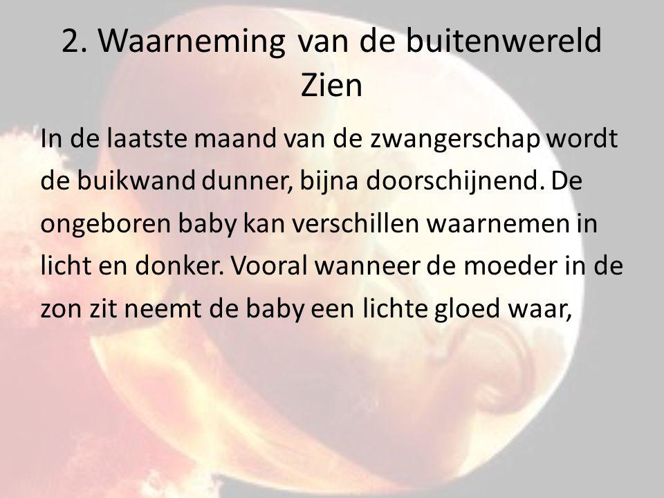2. Waarneming van de buitenwereld Zien In de laatste maand van de zwangerschap wordt de buikwand dunner, bijna doorschijnend. De ongeboren baby kan ve