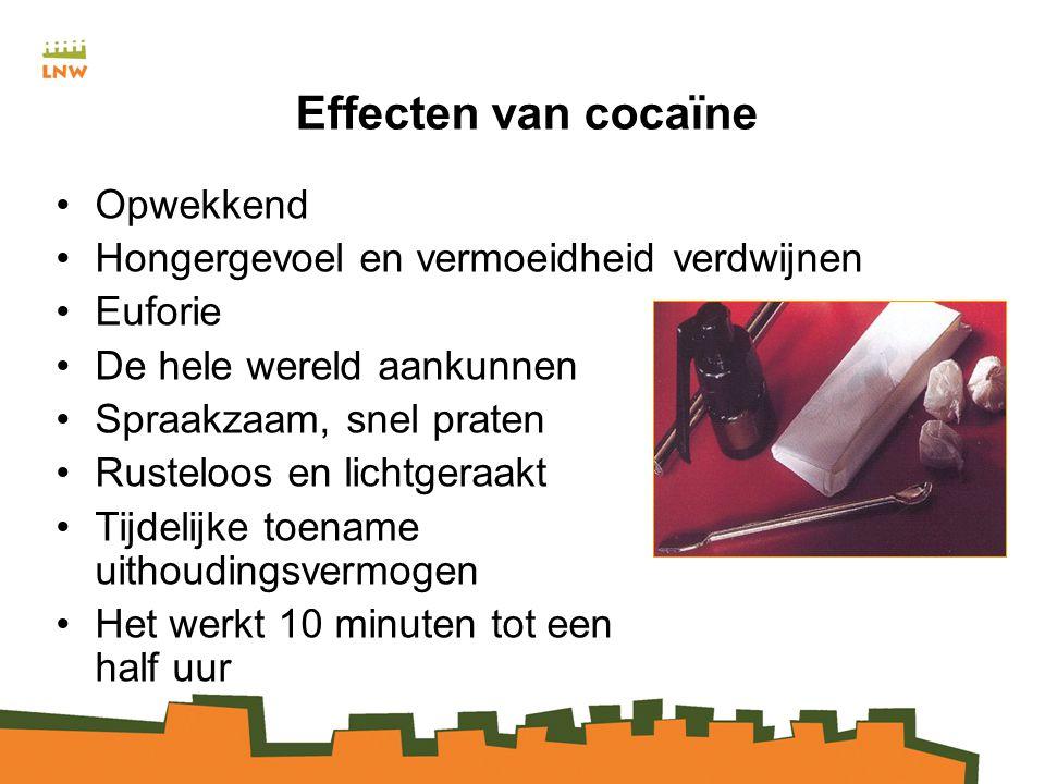 Effecten van cocaïne Opwekkend Hongergevoel en vermoeidheid verdwijnen Euforie De hele wereld aankunnen Spraakzaam, snel praten Rusteloos en lichtgeraakt Tijdelijke toename uithoudingsvermogen Het werkt 10 minuten tot een half uur
