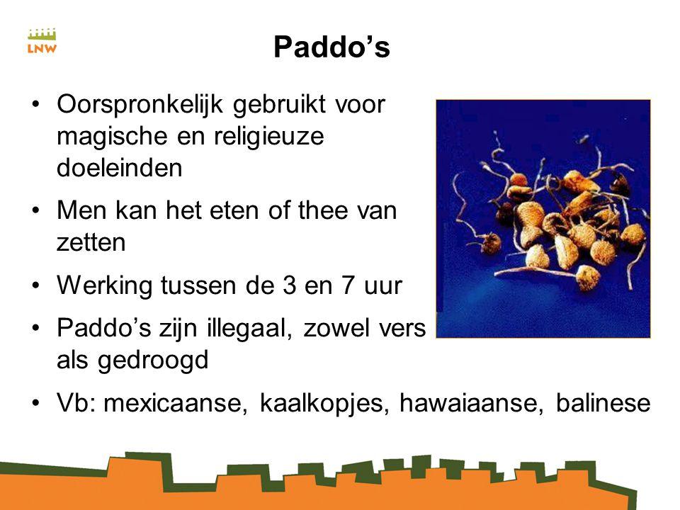 Paddo's Oorspronkelijk gebruikt voor magische en religieuze doeleinden Men kan het eten of thee van zetten Werking tussen de 3 en 7 uur Paddo's zijn illegaal, zowel vers als gedroogd Vb: mexicaanse, kaalkopjes, hawaiaanse, balinese