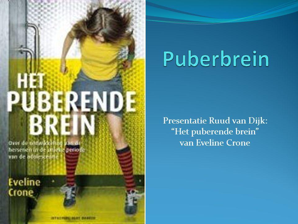Presentatie Ruud van Dijk: Het puberende brein van Eveline Crone