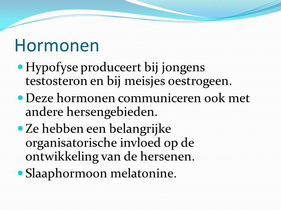 Hormonen Hypofyse produceert bij jongens testosteron en bij meisjes oestrogeen.