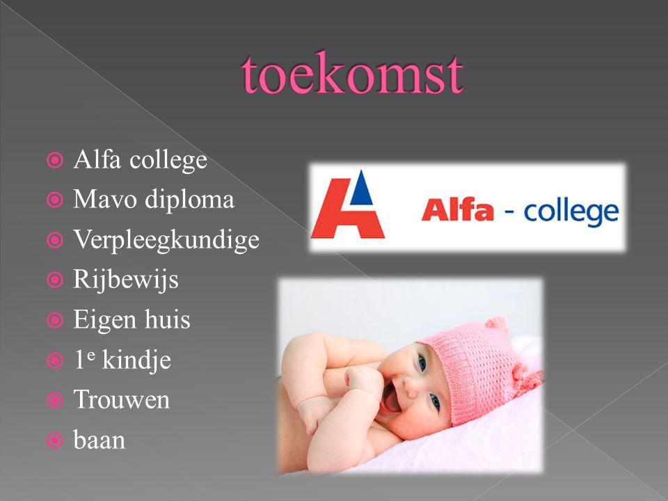  Alfa college  Mavo diploma  Verpleegkundige  Rijbewijs  Eigen huis  1 e kindje  Trouwen  baan