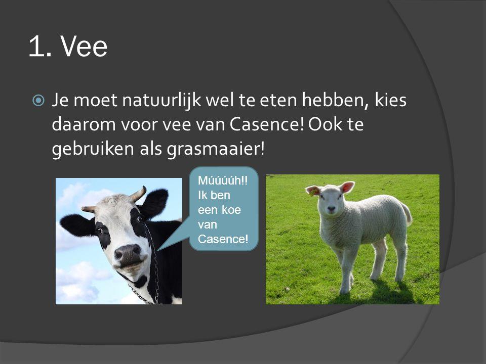1. Vee  Je moet natuurlijk wel te eten hebben, kies daarom voor vee van Casence! Ook te gebruiken als grasmaaier! Múúúúh!! Ik ben een koe van Casence