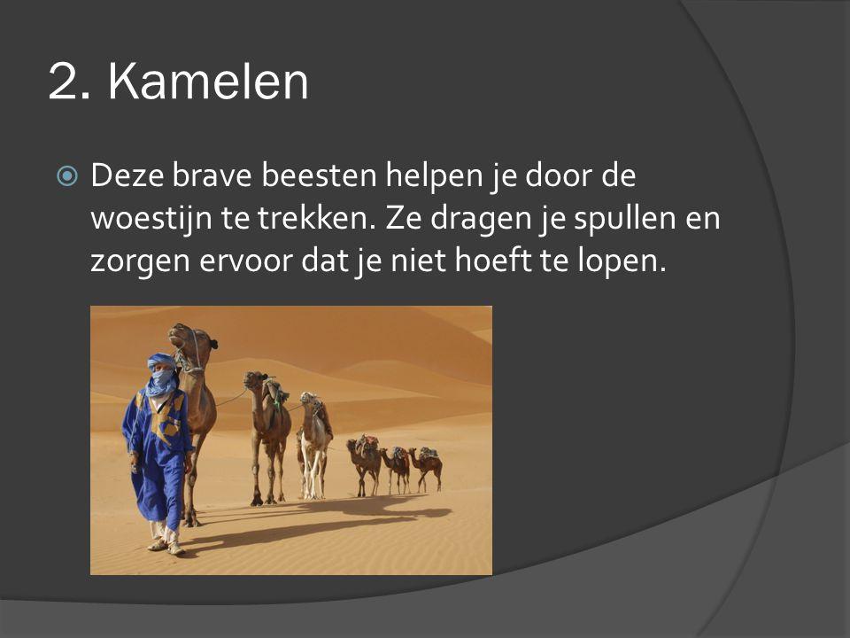 2. Kamelen  Deze brave beesten helpen je door de woestijn te trekken. Ze dragen je spullen en zorgen ervoor dat je niet hoeft te lopen.