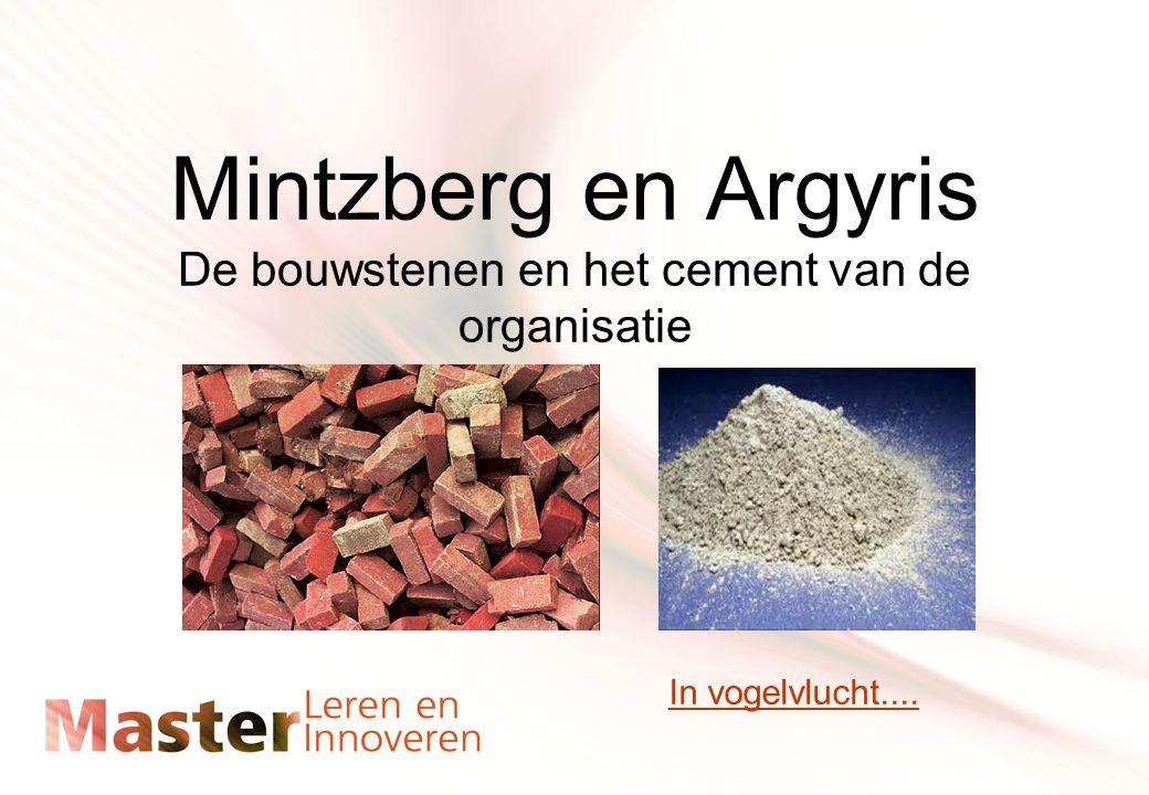 Mintzberg en Argyris De bouwstenen en het cement van de organisatie In vogelvlucht....