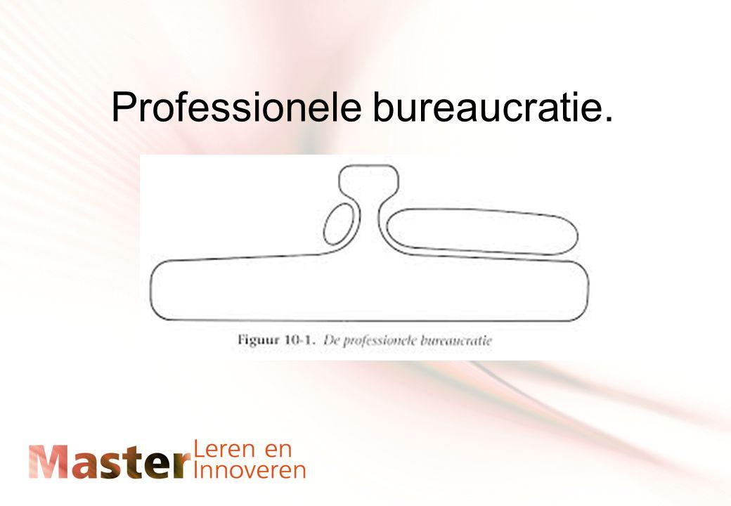 Professionele bureaucratie.