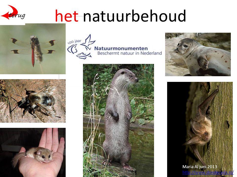 het natuurbehoud Maria Al juni 2013 http://www.donderwijs.nl/