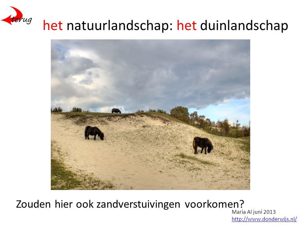 het natuurlandschap: het duinlandschap Zouden hier ook zandverstuivingen voorkomen.