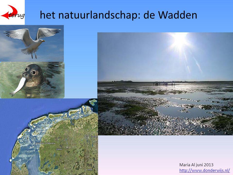het natuurlandschap: de Wadden Maria Al juni 2013 http://www.donderwijs.nl/