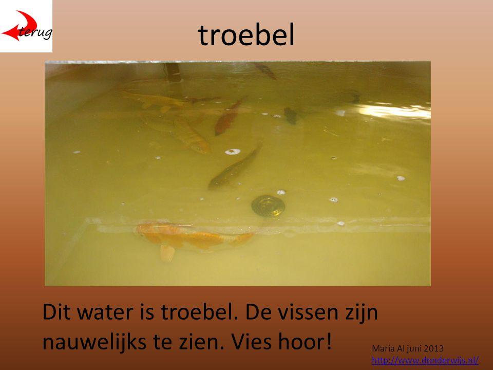 troebel Dit water is troebel. De vissen zijn nauwelijks te zien.