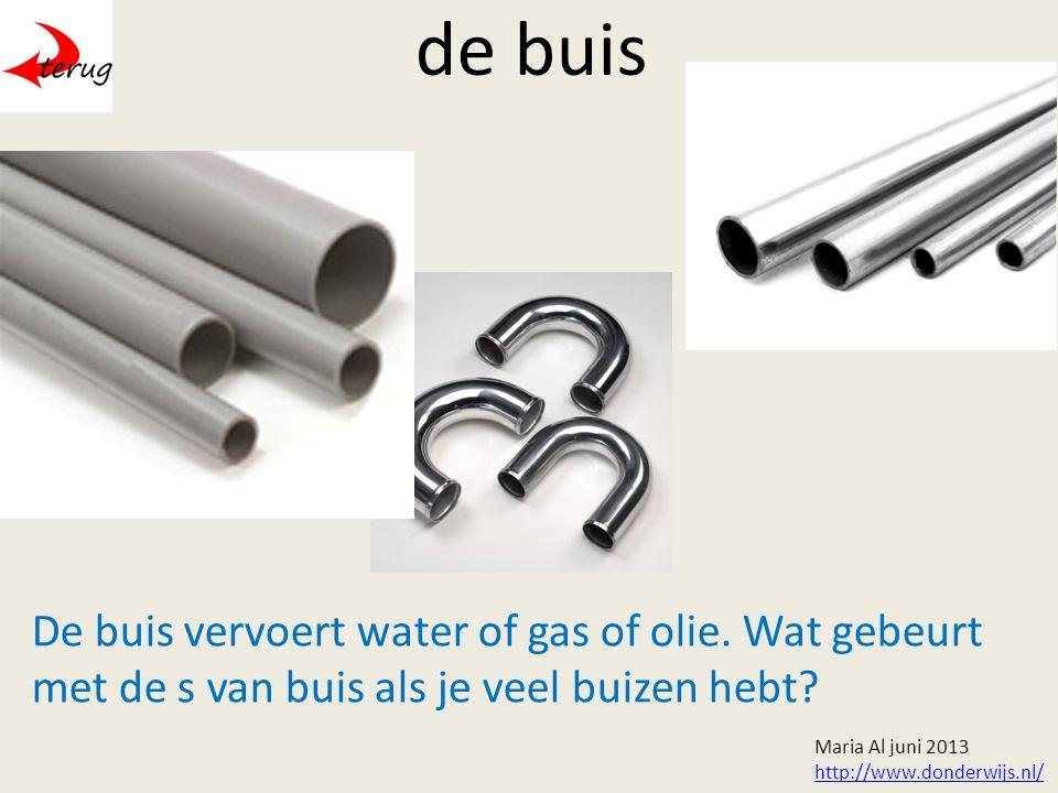 de buis De buis vervoert water of gas of olie.