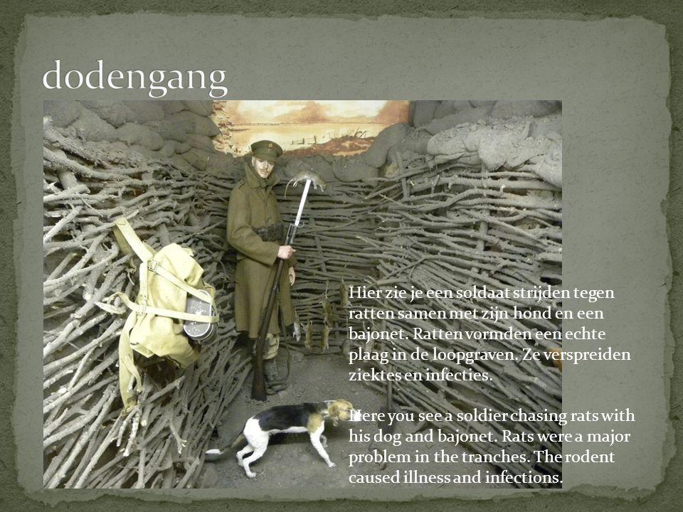 Hier zie je een soldaat strijden tegen ratten samen met zijn hond en een bajonet.
