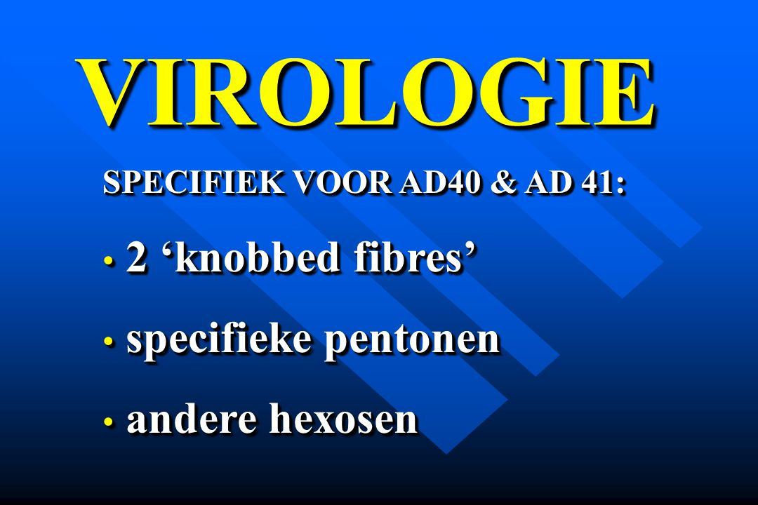 SPECIFIEK VOOR AD40 & AD 41: 2 'knobbed fibres' 2 'knobbed fibres' specifieke pentonen specifieke pentonen andere hexosen andere hexosen SPECIFIEK VOO
