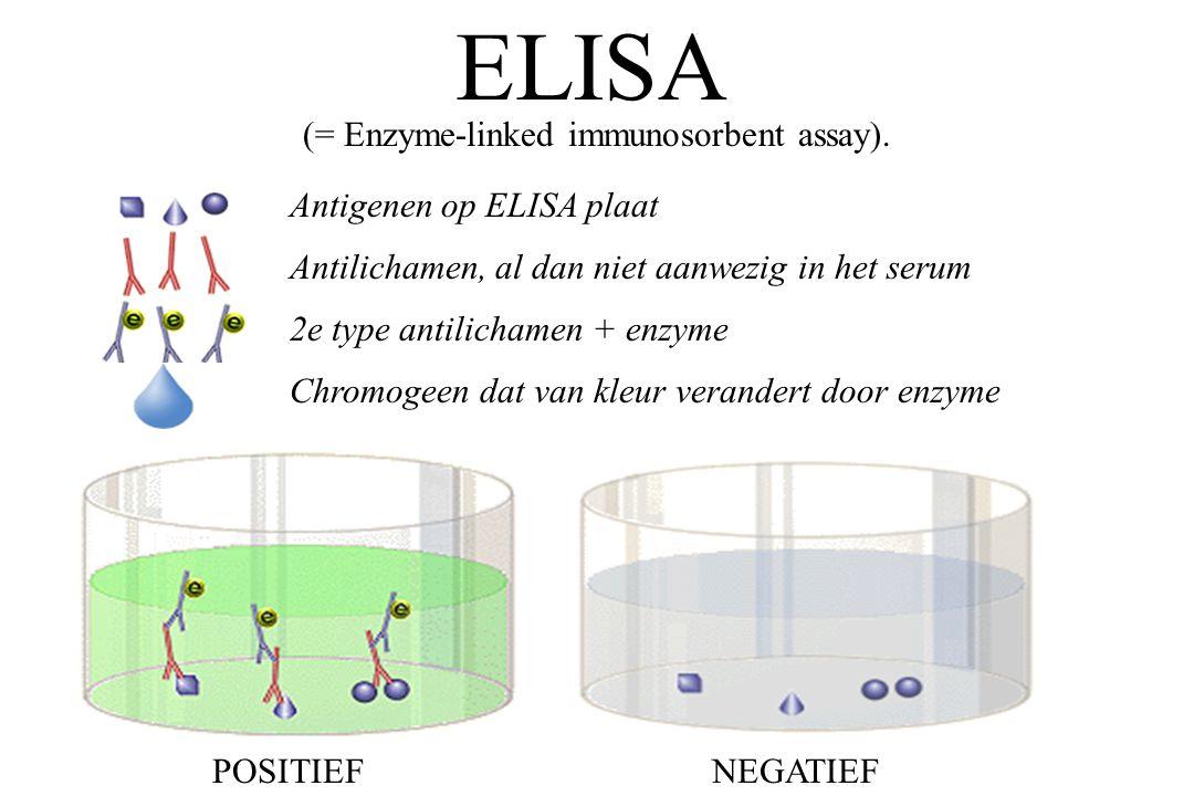 Antigenen op ELISA plaat Antilichamen, al dan niet aanwezig in het serum 2e type antilichamen + enzyme Chromogeen dat van kleur verandert door enzyme