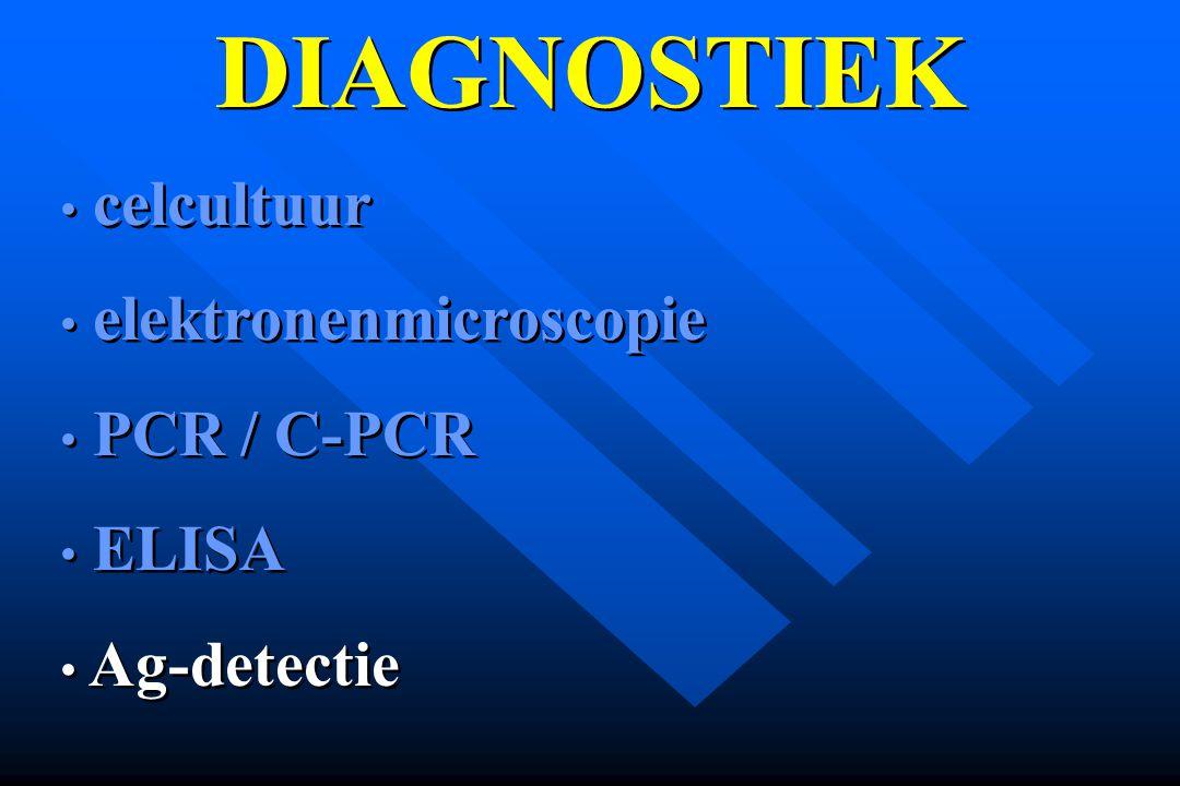 DIAGNOSTIEK celcultuur elektronenmicroscopie PCR / C-PCR ELISA Ag-detectie celcultuur elektronenmicroscopie PCR / C-PCR ELISA Ag-detectie