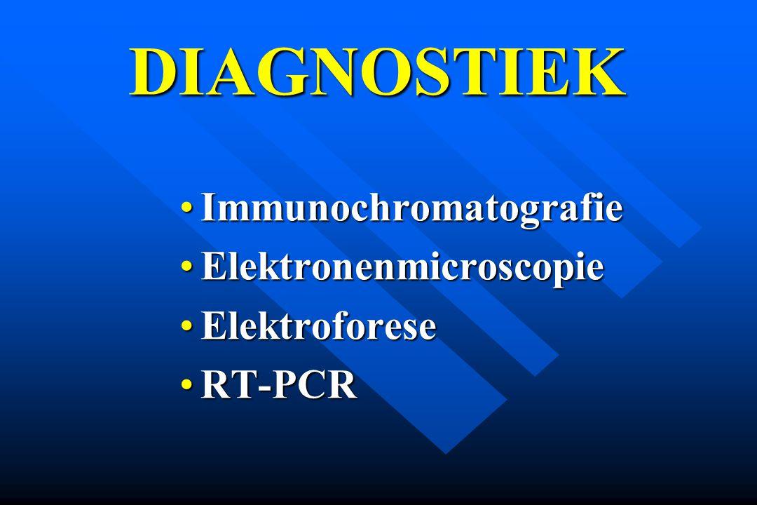 ImmunochromatografieImmunochromatografie ElektronenmicroscopieElektronenmicroscopie ElektroforeseElektroforese RT-PCRRT-PCR DIAGNOSTIEK