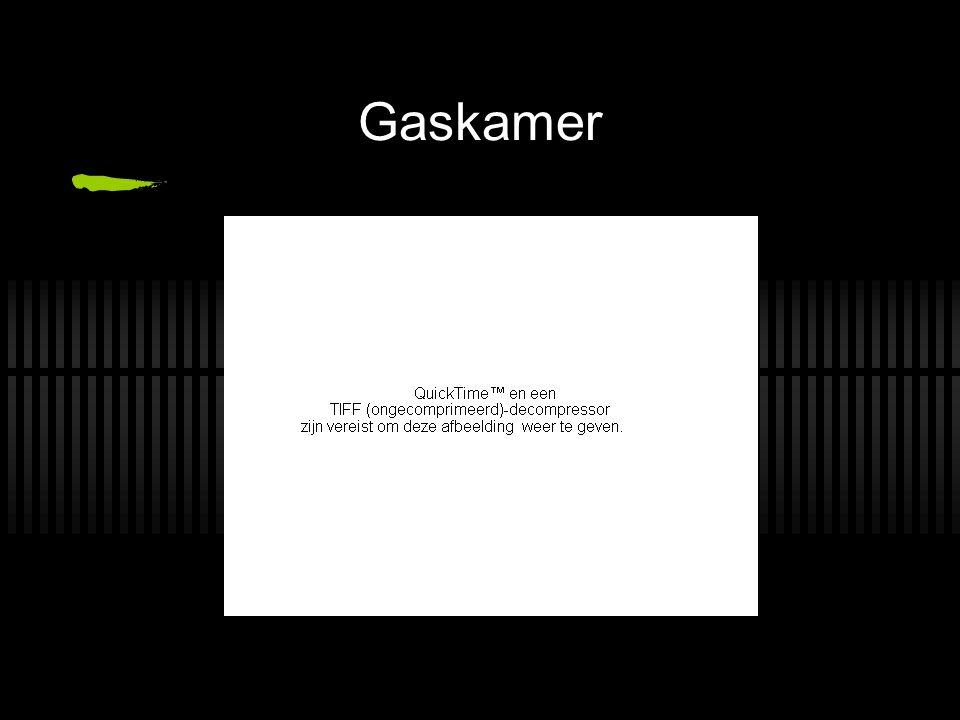 Gaskamer