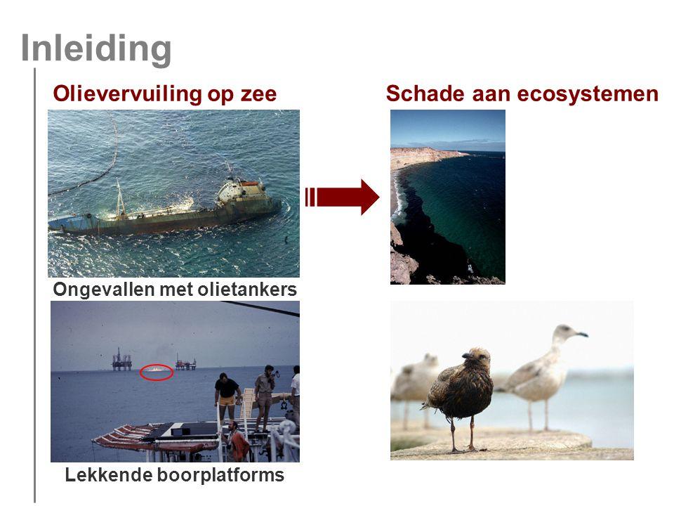 Inleiding Olievervuiling op zee Ongevallen met olietankers Lekkende boorplatforms Schade aan ecosystemen