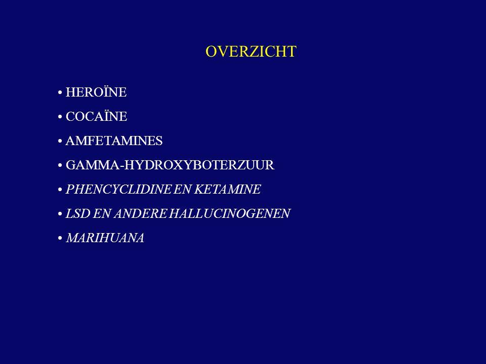 HEROÏNE COCAÏNE AMFETAMINES GAMMA-HYDROXYBOTERZUUR PHENCYCLIDINE EN KETAMINE LSD EN ANDERE HALLUCINOGENEN MARIHUANA OVERZICHT
