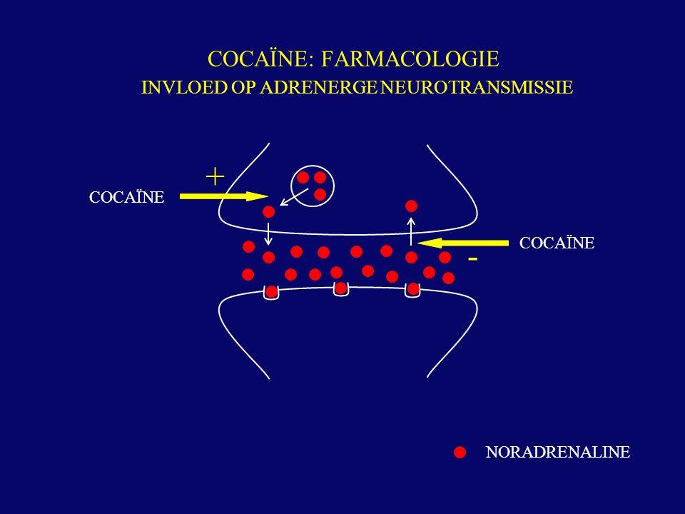 COCAÏNE: FARMACOLOGIE INVLOED OP ADRENERGE NEUROTRANSMISSIE NORADRENALINE COCAÏNE + -