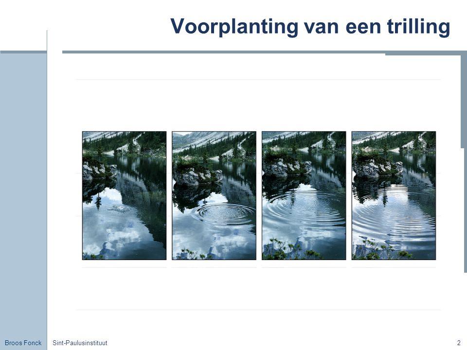 Broos Fonck Sint-Paulusinstituut3 Welke soorten golven zijn er.