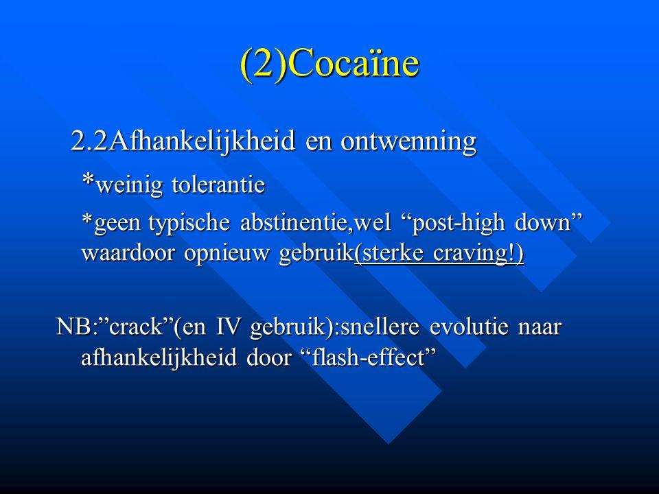 """(2)Cocaïne 2.2Afhankelijkheid en ontwenning 2.2Afhankelijkheid en ontwenning * weinig tolerantie *geen typische abstinentie,wel """"post-high down"""" waard"""