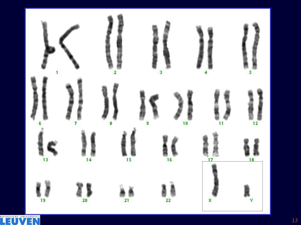 Koppelingsonderzoek: linkage analysis Dys.Geen Dys.