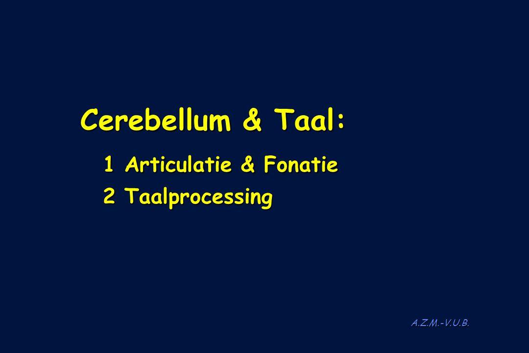 A.Z.M.-V.U.B. Cerebellum & Taal: Cerebellum & Taal: 1 Articulatie & Fonatie 1 Articulatie & Fonatie 2 Taalprocessing 2 Taalprocessing