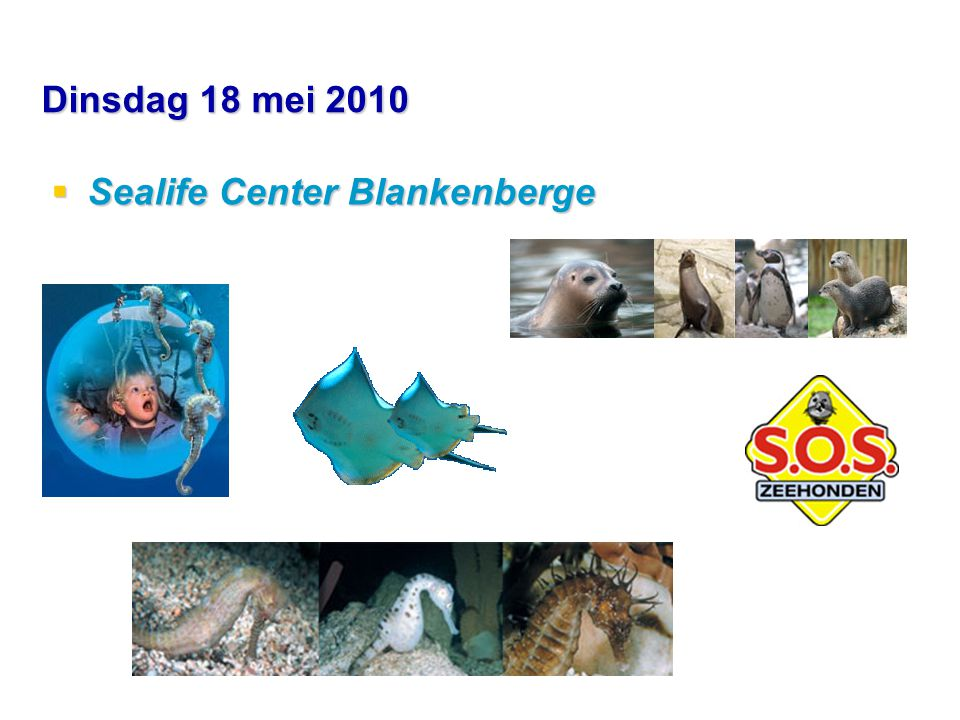 Dinsdag 18 mei 2010  Sealife Center Blankenberge