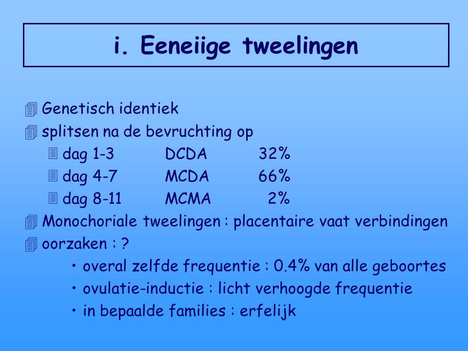 i. Eeneiige tweelingen 4Genetisch identiek 4splitsen na de bevruchting op 3dag 1-3 DCDA32% 3dag 4-7MCDA66% 3dag 8-11MCMA 2% 4Monochoriale tweelingen :