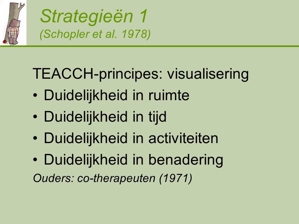 Strategieën 1 (Schopler et al.