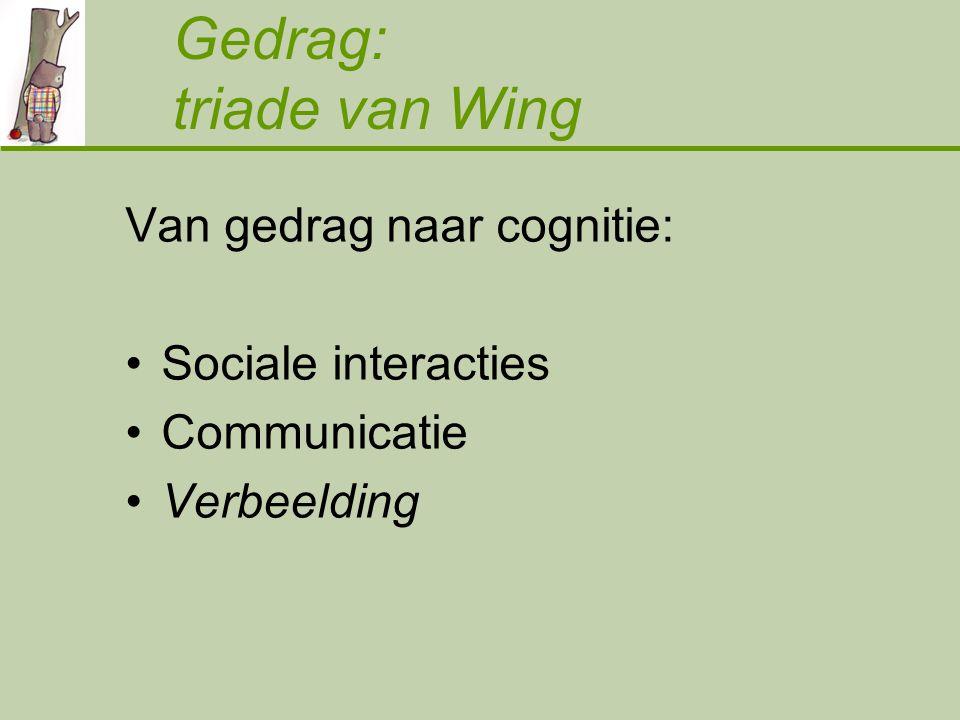 Gedrag: triade van Wing Van gedrag naar cognitie: Sociale interacties Communicatie Verbeelding
