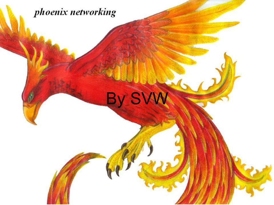 By SVW