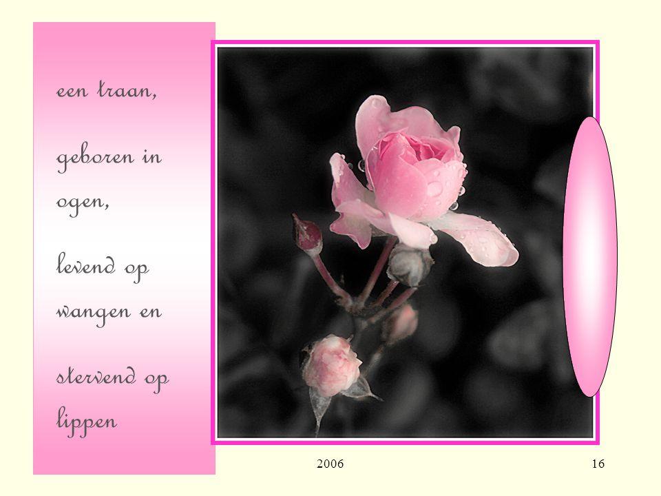200616 een traan, geboren in ogen, levend op wangen en stervend op lippen