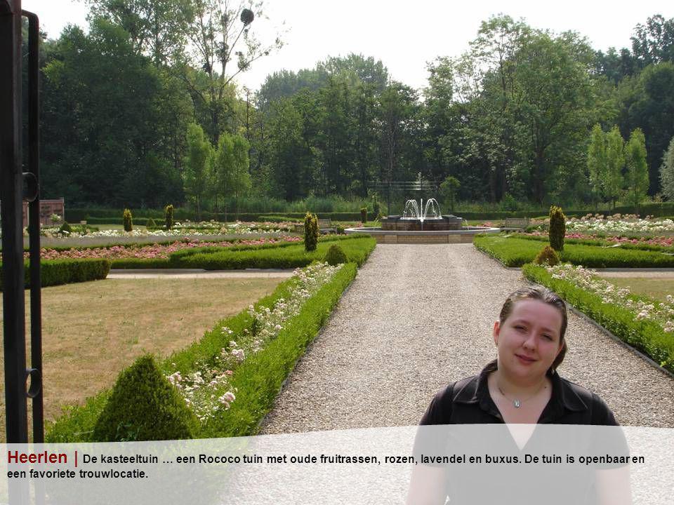 Heerlen | De kasteeltuin … een Rococo tuin met oude fruitrassen, rozen, lavendel en buxus.