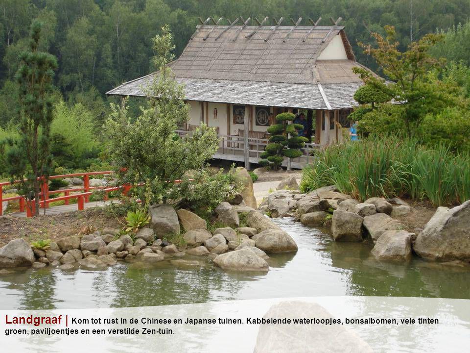 Landgraaf | Kom tot rust in de Chinese en Japanse tuinen.